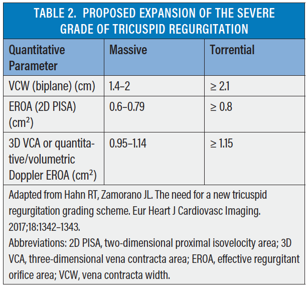 Three Dimensional 3D Echocardiography Has Emerged As An Essential Tool In Evaluating The Tricuspid Valve Because It Allows For Simultaneous Visualization